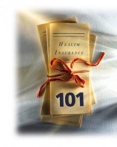visitors insurance 101